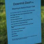 Design 13: Down Hill Dash