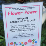 Design 21: Ladies of the Lake